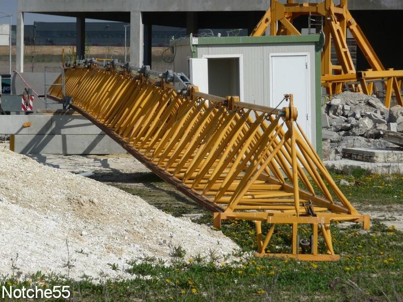Les grues de GUILLOUART (France) 07041130
