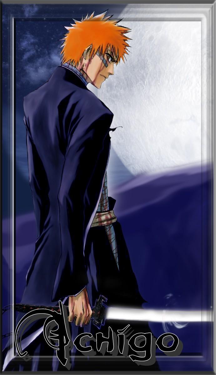 •Ichigo Kurosaki, Shinigami• 12488510