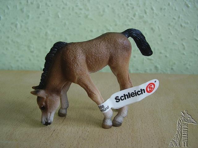 Martin's Schleich newcomers! P1010183