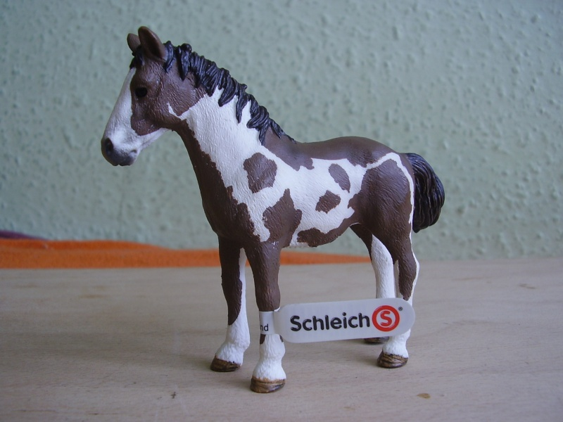 Martin's Schleich newcomers! - Page 4 P1010288
