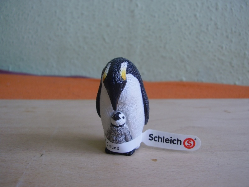 Martin's Schleich newcomers! - Page 4 P1010290