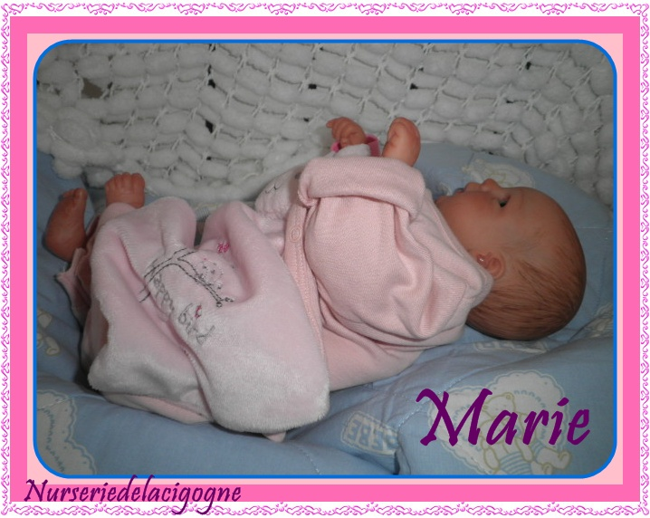 """naissance à la """"nurseriedelacigogne""""  - Page 3 Pc190410"""