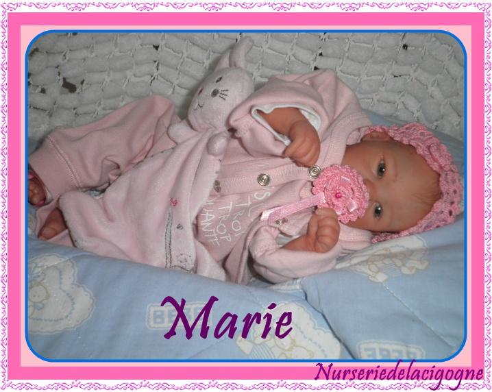 """naissance à la """"nurseriedelacigogne""""  - Page 3 Pc190411"""