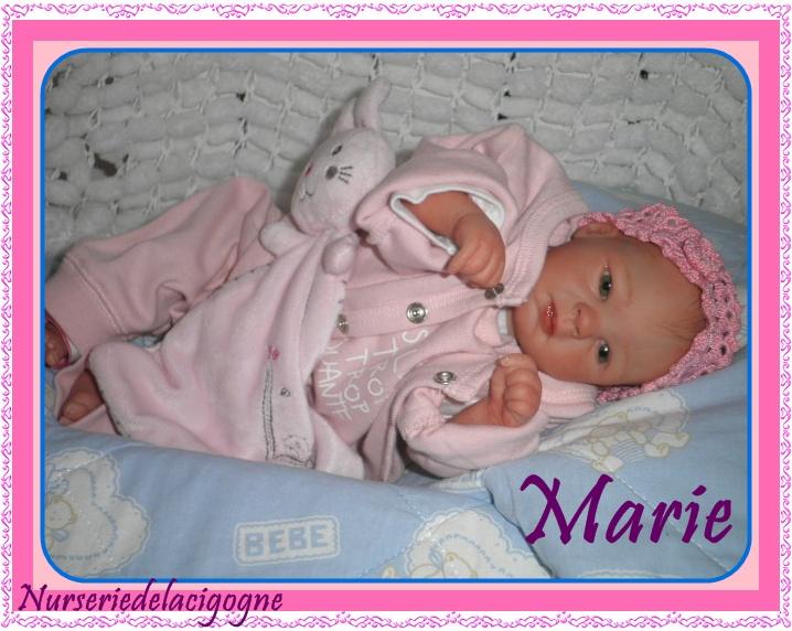 """naissance à la """"nurseriedelacigogne""""  - Page 3 Pc190412"""
