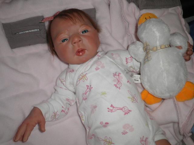 """naissance à la """"nurseriedelacigogne""""  - Page 4 Pc230513"""