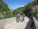 Jeune Vipère de passage en Drôme B-sdc112