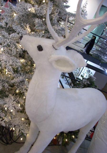 Joyeux Noël a toute l'équipe de Chasse-illimitée !Bravo à Stéphane Buckweiser , Buckacadien,Sam,Jeff,Ginodeergun,François Paquet et Ringo pour votre bon travail. Cerf-b11