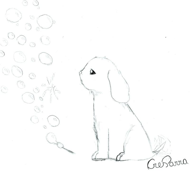 Bubbles Img00810