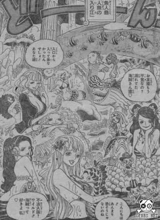 One Piece scan 608 0310