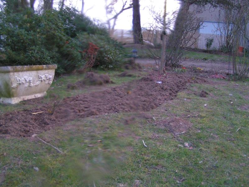 photos de mon jardin Pict0010