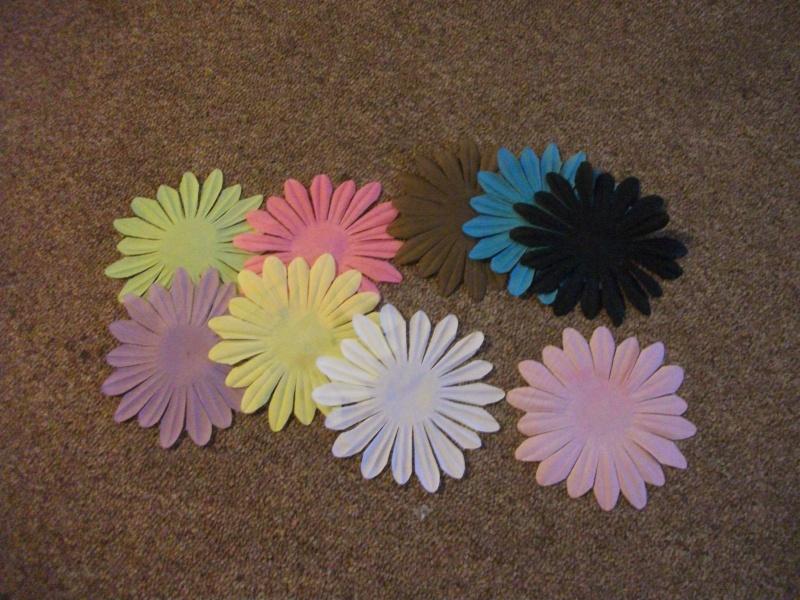 large flowers,  12 cm. different colors, $ 4 Dscf0415