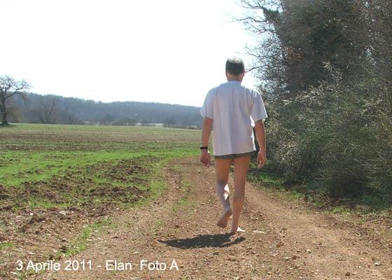una passeggiata domenicale A10