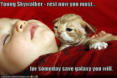 post some funny star wars pics!! Funny-10