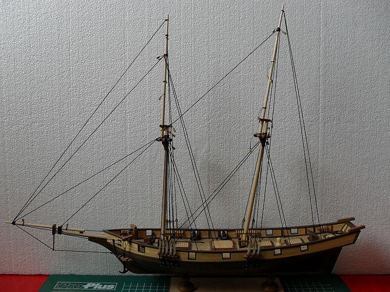 Albatros von Constructo 113