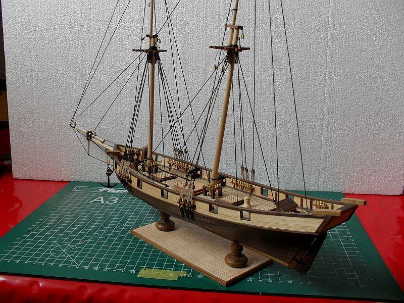 Albatros von Constructo 212