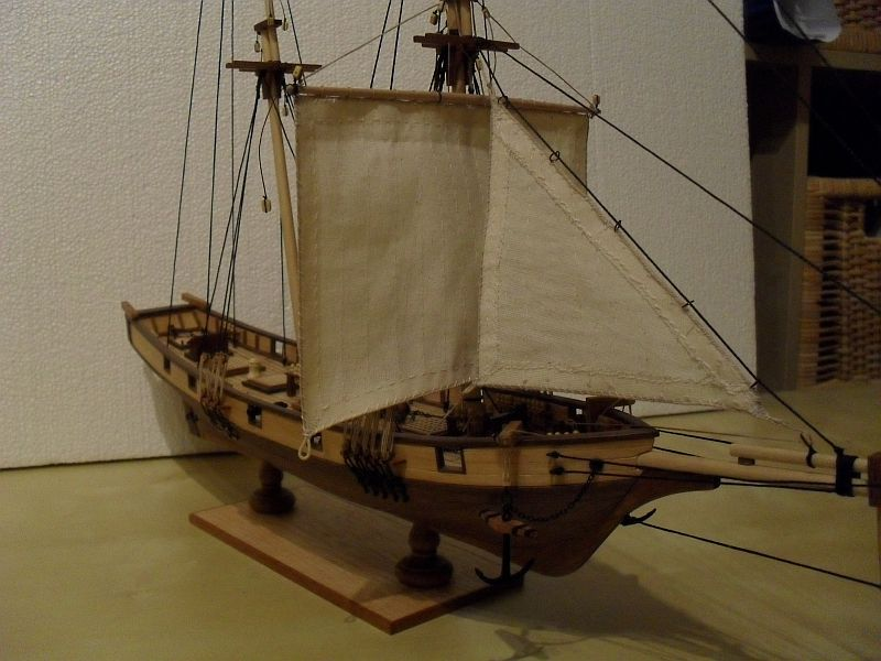 Albatros von Constructo 214