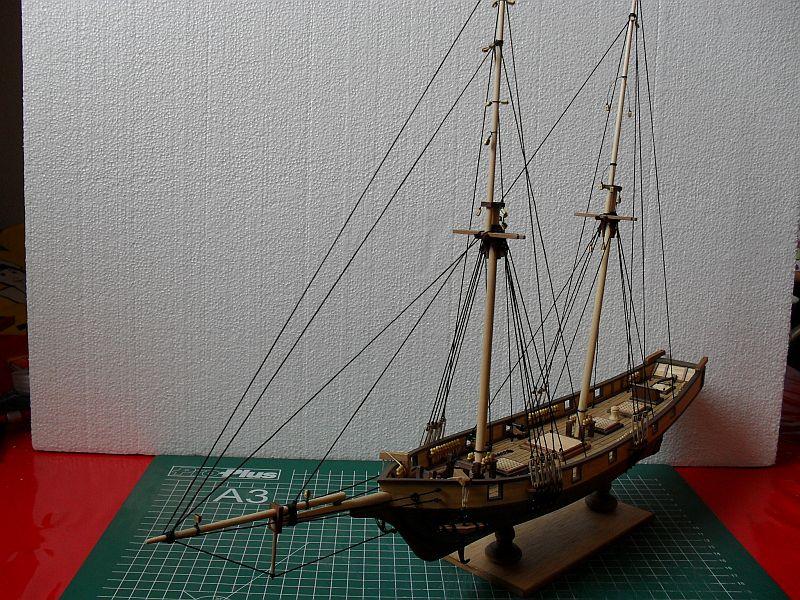 Albatros von Constructo 312