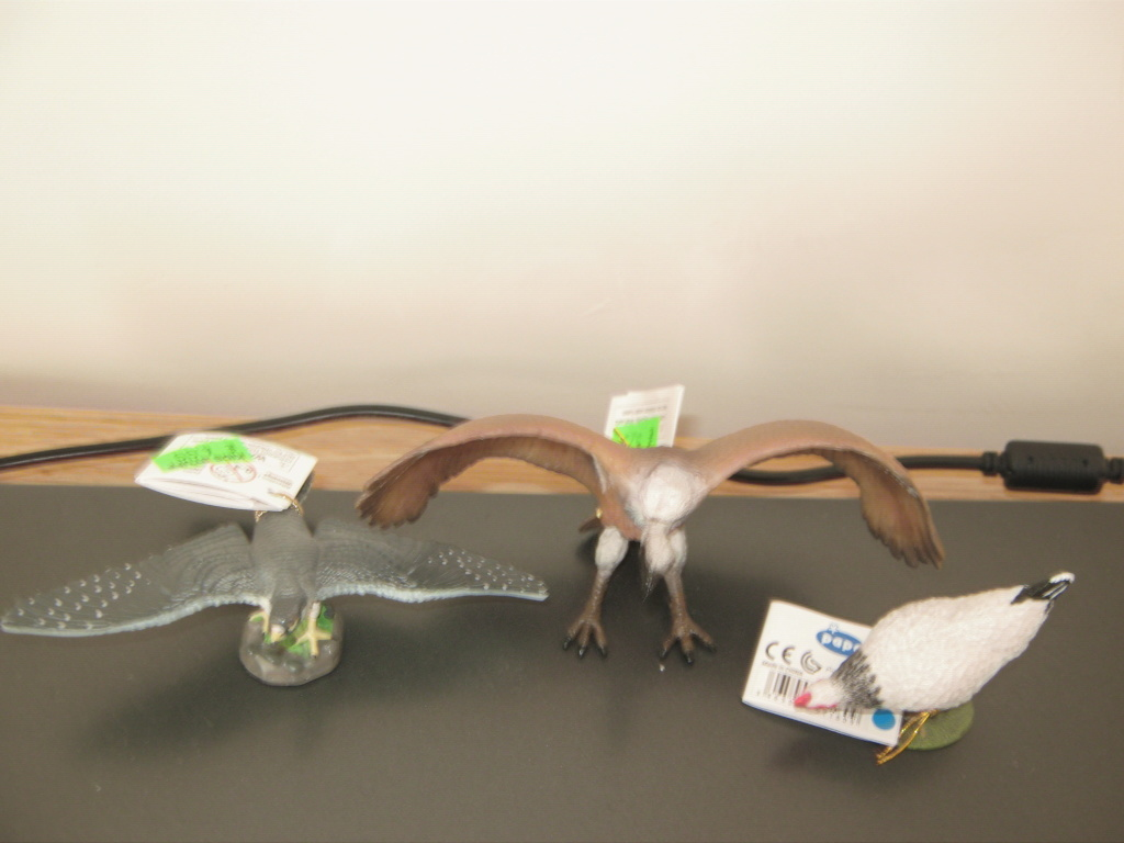 Five fantastic, fuzzy farm figures from Papo !!! :-D 00612