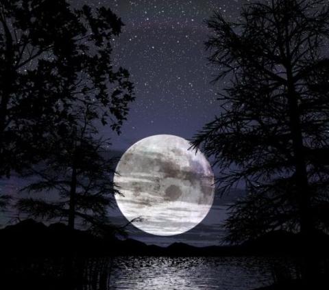 Notturno... 24102210