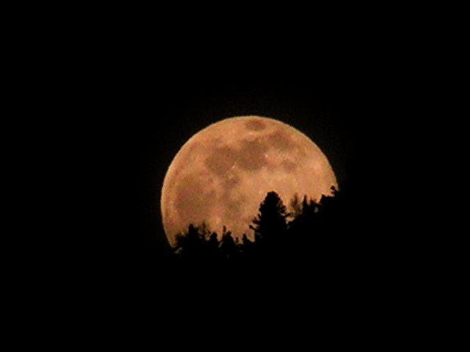 Notturno... Luna_r10