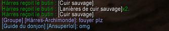 """[Best Of] Les joueurs de wow changent, """"l'hortaugrafe ossi"""" ! 210"""