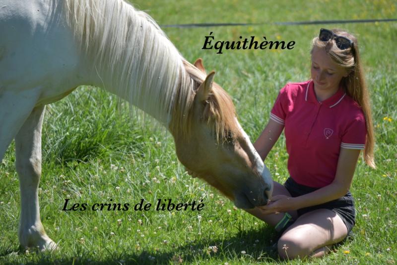 Equithème - Page 2 Dsc_0117
