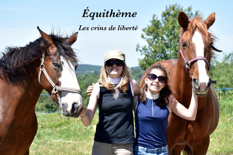 Equithème - Page 2 Dsc_0120