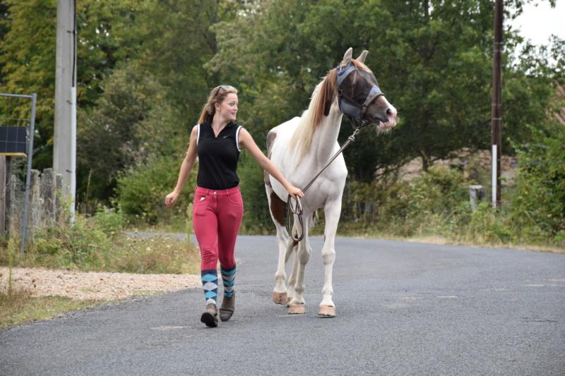 Cochise, ONC cheval Dsc_0161