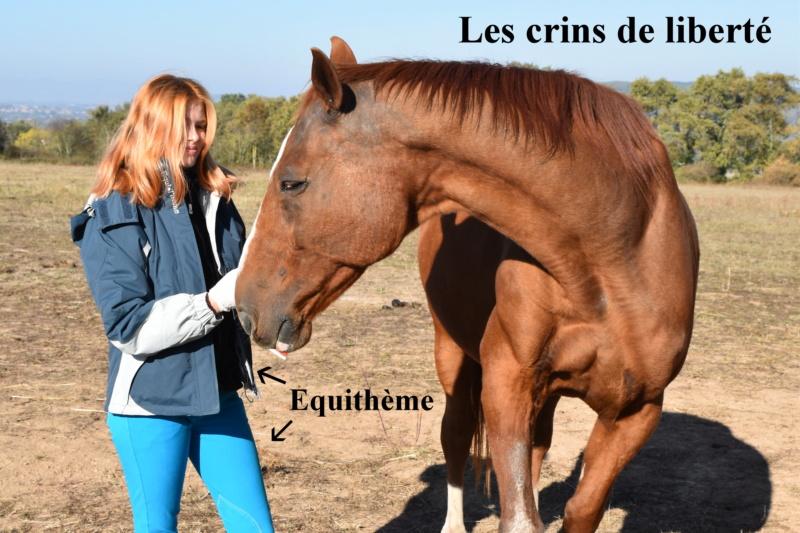 Equithème - Page 2 Dsc_0241