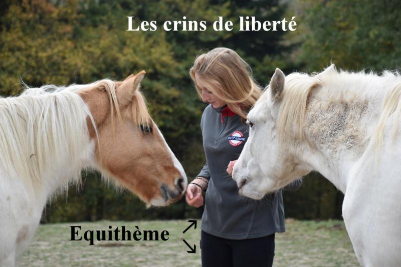 Equithème - Page 2 Dsc_0242