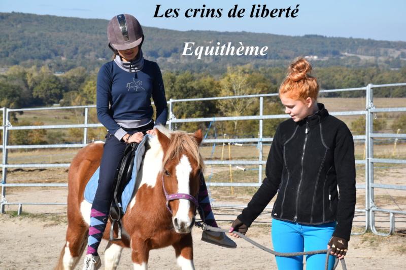 Equithème - Page 2 Dsc_0249