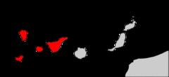 Murciélago orejudo (Plecotus teneriffae) 240px-10