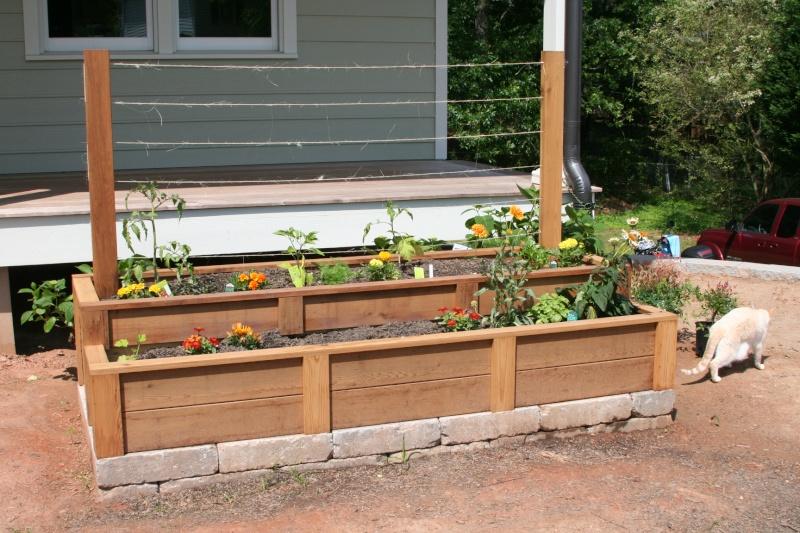 previous beds..how to prep for SFG Garden19