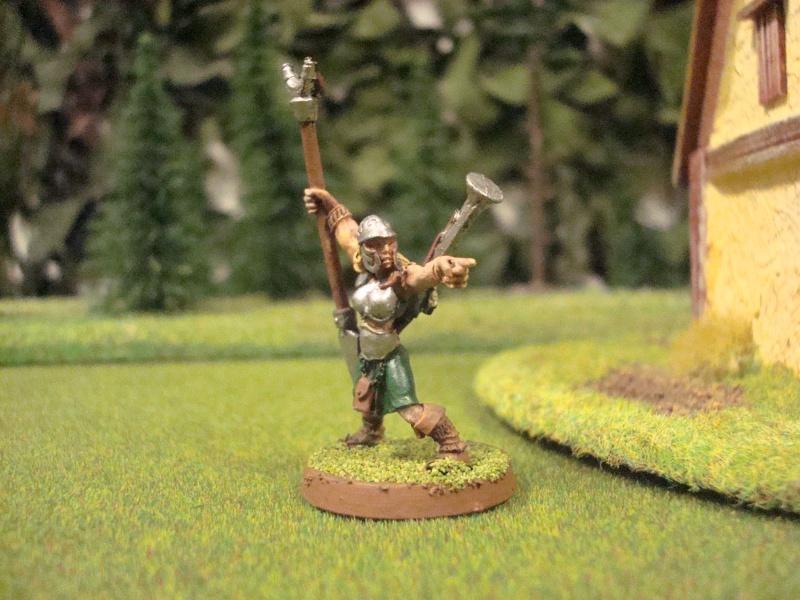 ostlander - An Ostlander warband from Albion Dsc01118