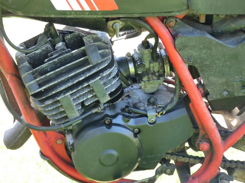 Projet de restauration P1020311