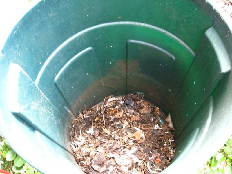 Compost is my new Obsession!! Img_4414