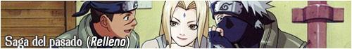 Naruto Shippūden - Saga del Pasado [relleno] Sagade10