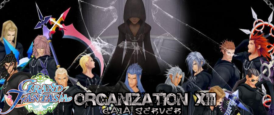 Organization XIII -