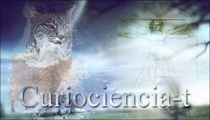 CurioCiencia-T