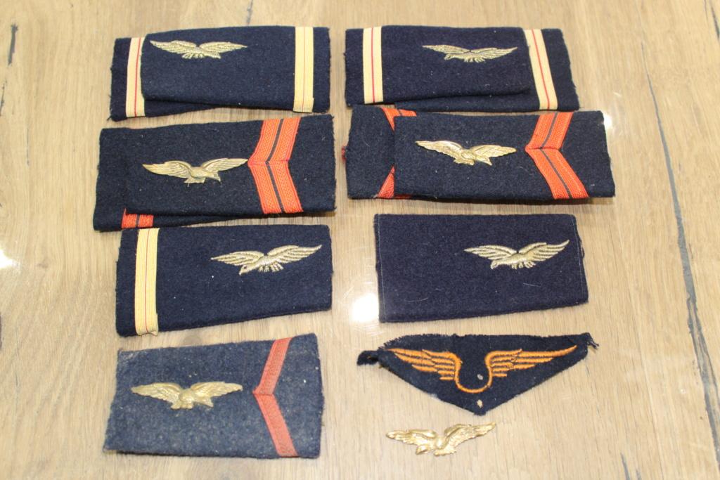 Ensemble de fourreaux d'épaule de l'armée de l'air BAISSE DU PRIX Img_1514