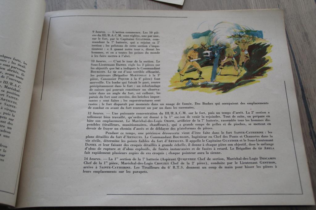 """Livre """"de l'AOF aux Bords du Rhin"""" - la 9ème Division d'Infanterie Coloniale -ALPINS-AVRIL3 - BAISSE DU PRIX Img_3026"""