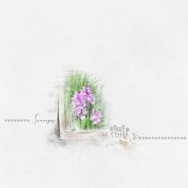2018-45 / Challenge invité : Une page de Manouly Fleurs10