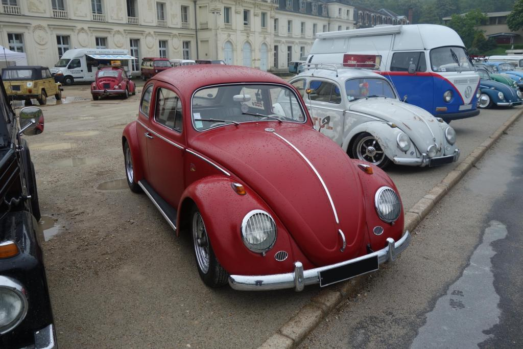 Bug'z in beauce Bug_in25