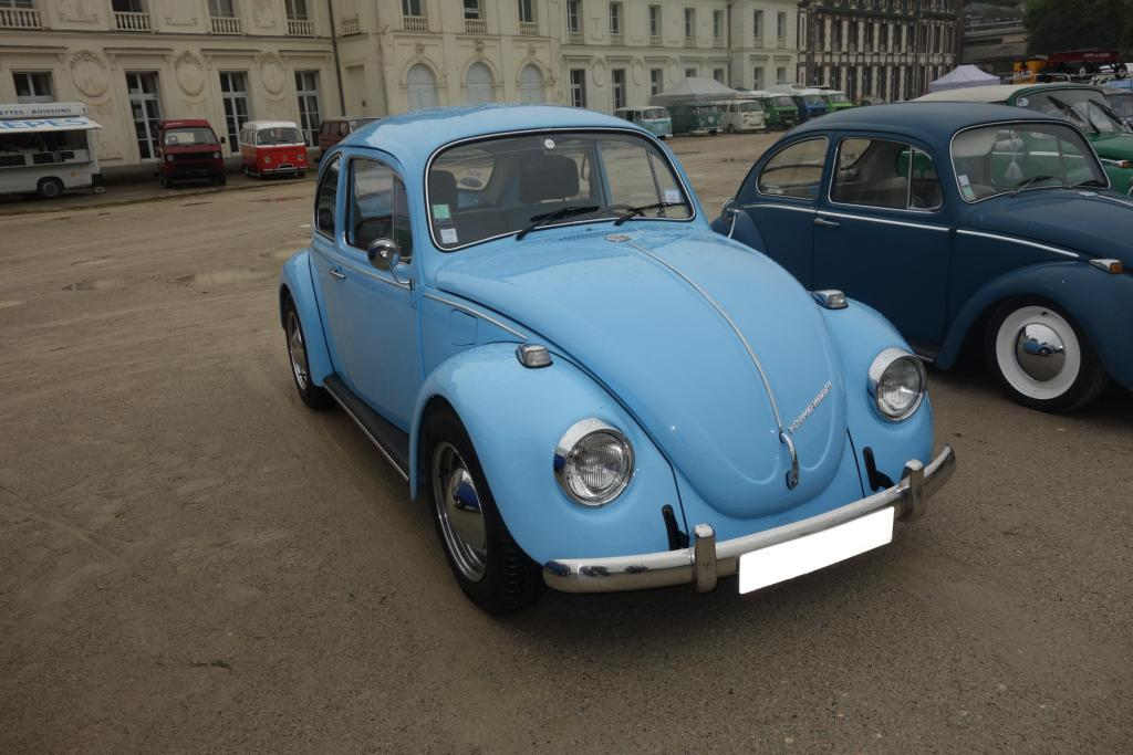 Bug'z in beauce Bug_in27