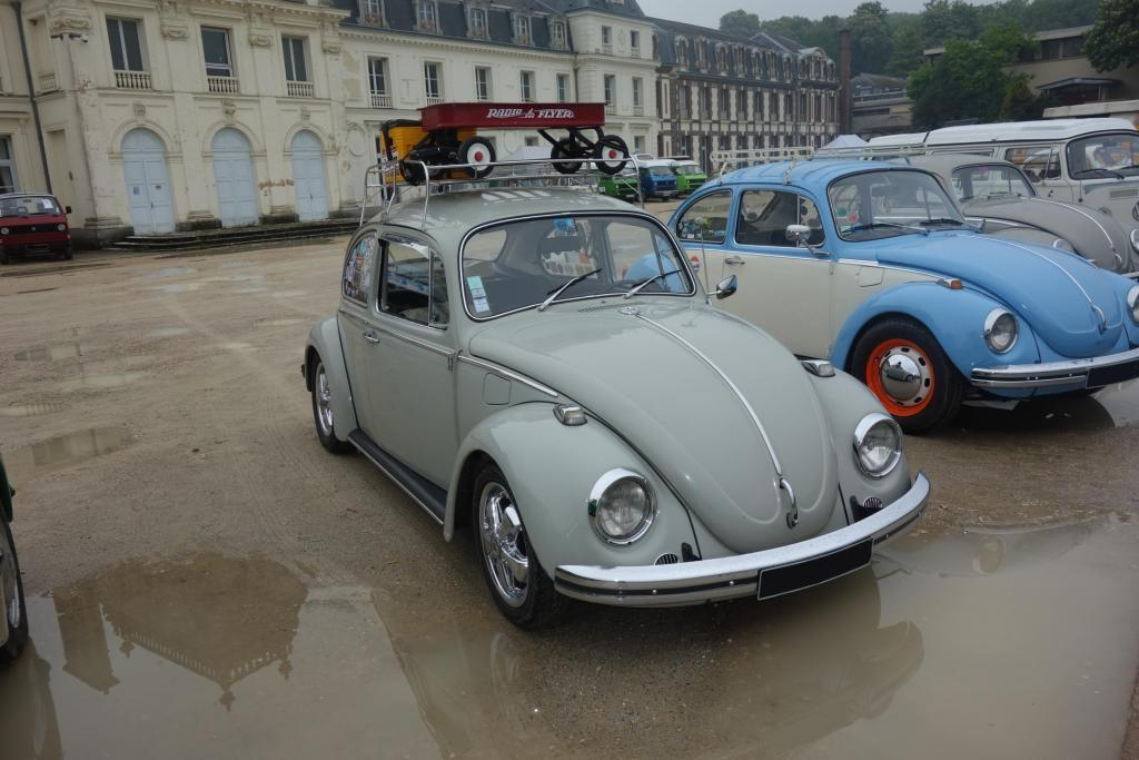 Bug'z in beauce Bug_in29