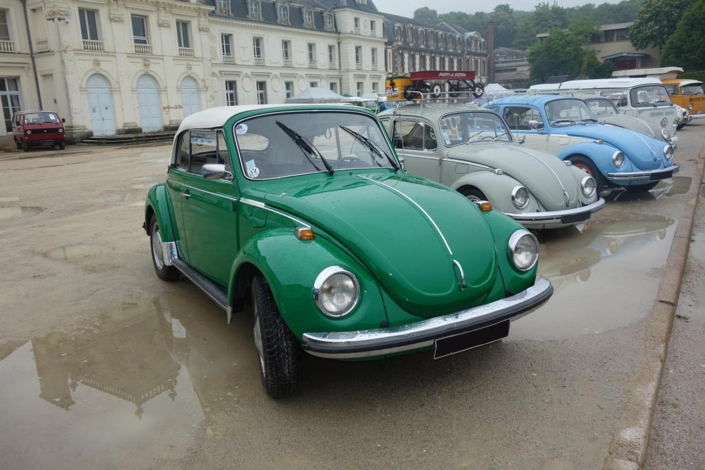 Bug'z in beauce Bug_in30