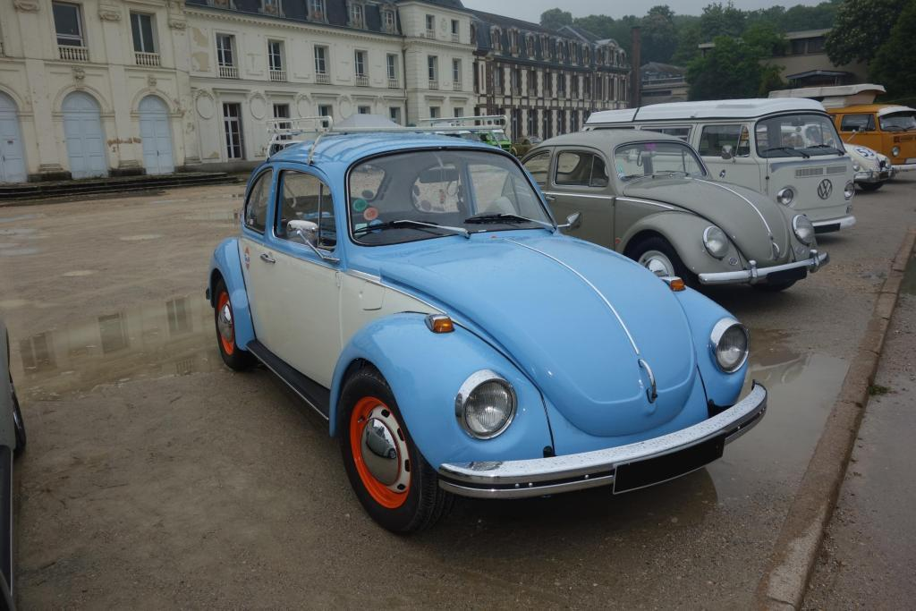 Bug'z in beauce Bug_in31