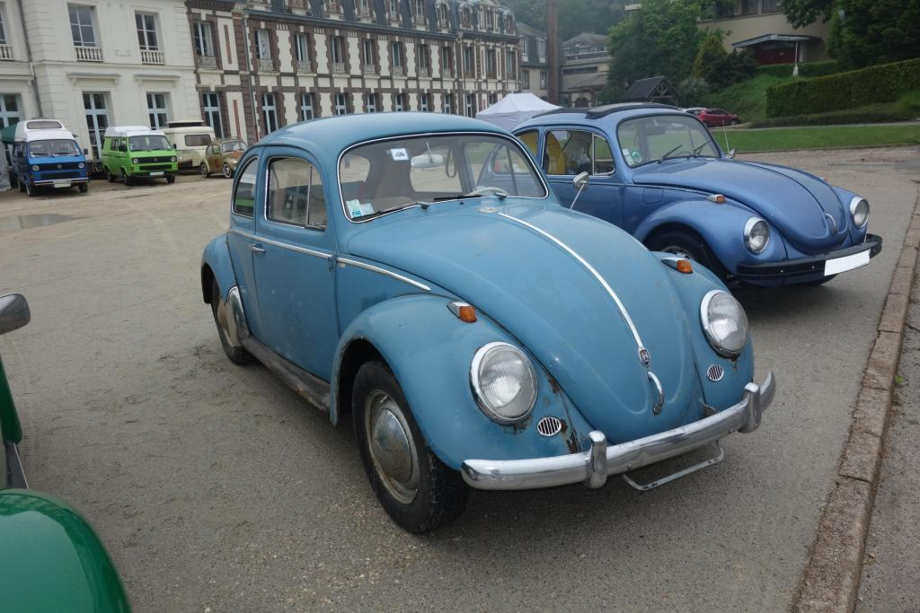 Bug'z in beauce Bug_in36