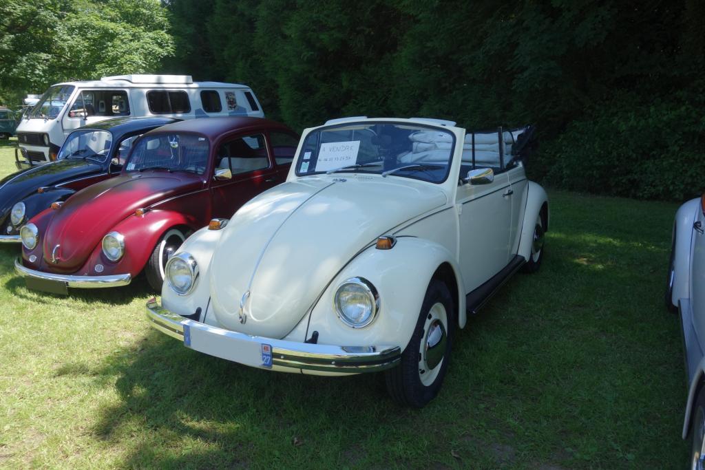 meeting VW Bonneville sur Iton  22 et 23 juin Meetin11