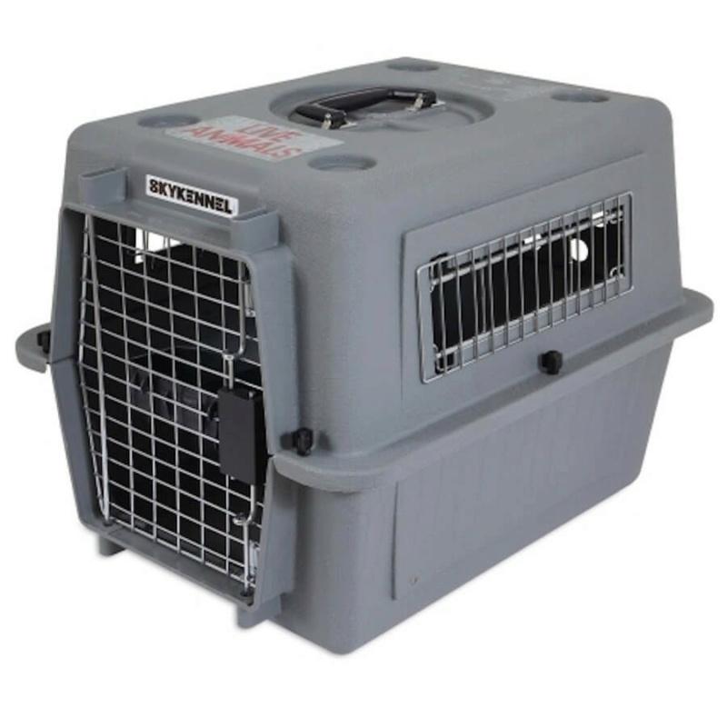 Mettre un chat dans une caisse de transport Caisse10